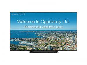 80 Zoll FHD Display - Sharp PNQ801E (Neuware) kaufen